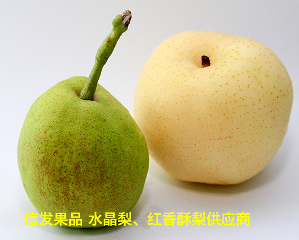 Hongxiangsu pear  VS Golden pear