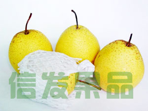 http://www.zhaozhouchina.com/Upload/xinfa_a1.jpg