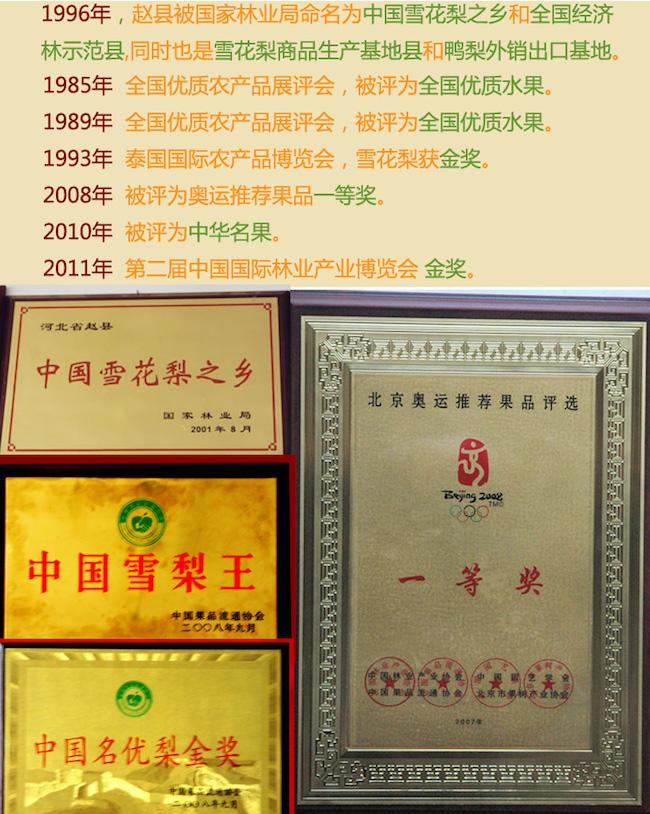 赵县雪花梨奖项